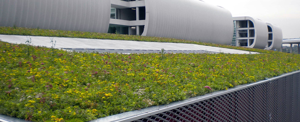 Green Roof Detail with Geoplast Drainroof Malpensa