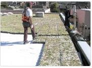 Completa Dachgarten System fix und fertig