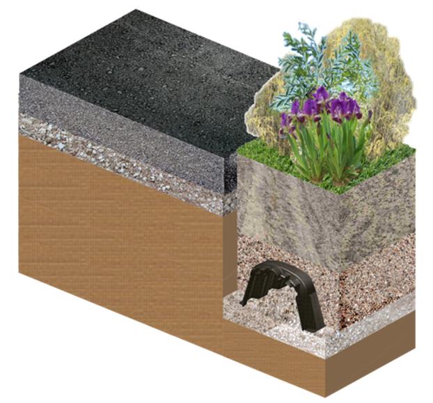 Bewässerungsanlage und Phytoreinigung
