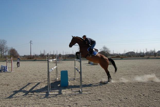 Consolidamento Fondi Equestri_11