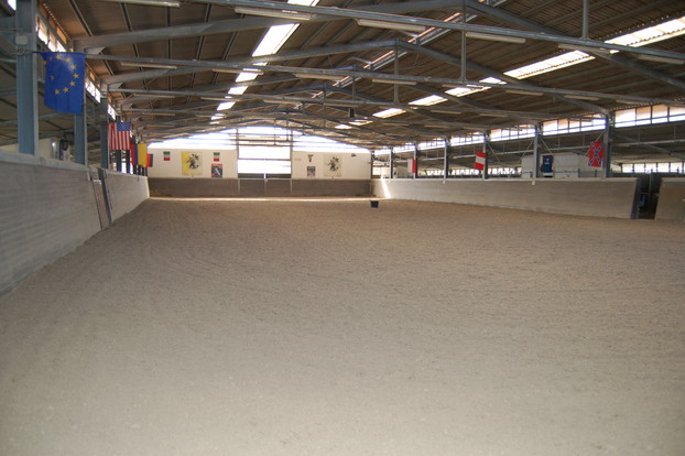 Consolidation of equestrian surfaces_4