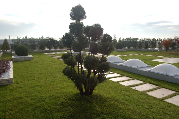 giardino-pensile-estensivo-a-prato-3