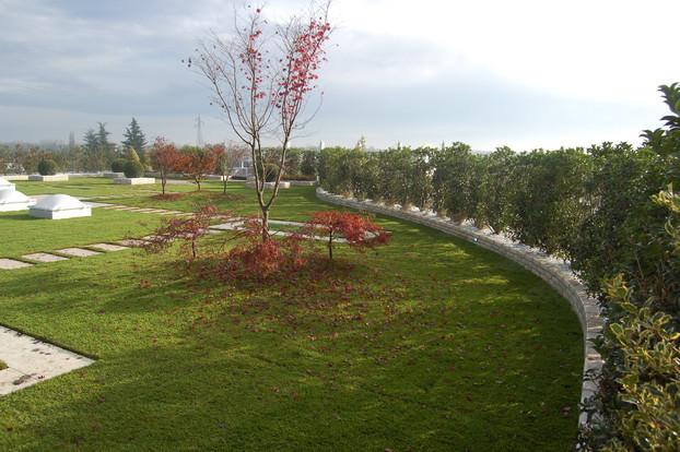giardino-pensile-estensivo-a-prato-4