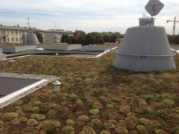 Extensive Roof Gardens with Sedum - Drainroof