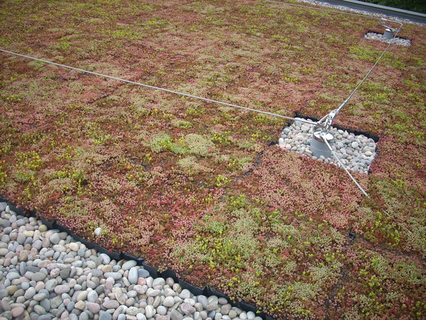 Carrier Planted Roof Garden_3