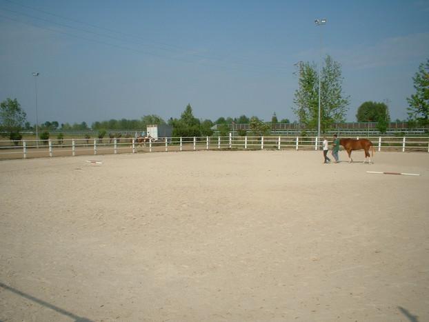 Consolidamento Fondi Equestri_17