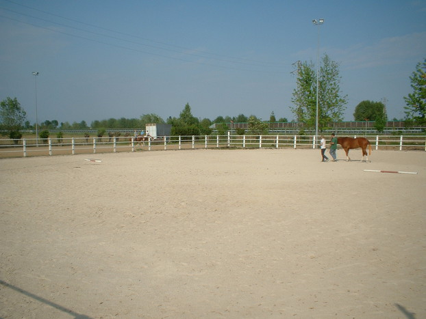 Consolidation of equestrian surfaces_5