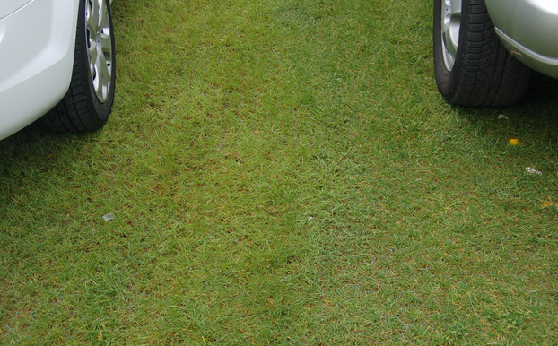 Privater grüner Parkplatz