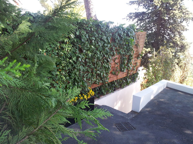 Wall-Y vertical garden_20