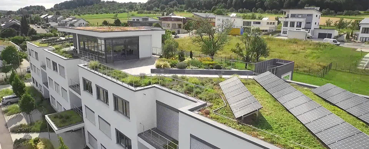 Green rooftops France