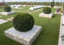 Extensiver Rasendachgarten