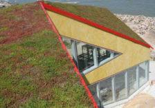 begrünte Dachterrasse