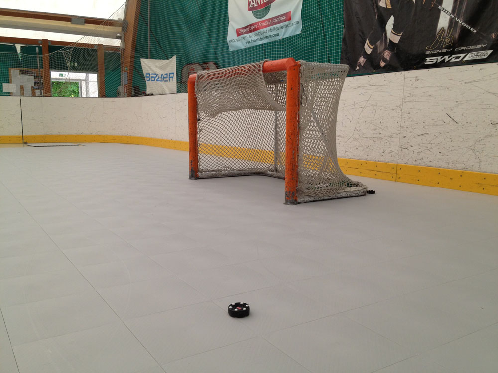 INLINE HOCKEY SURFACE