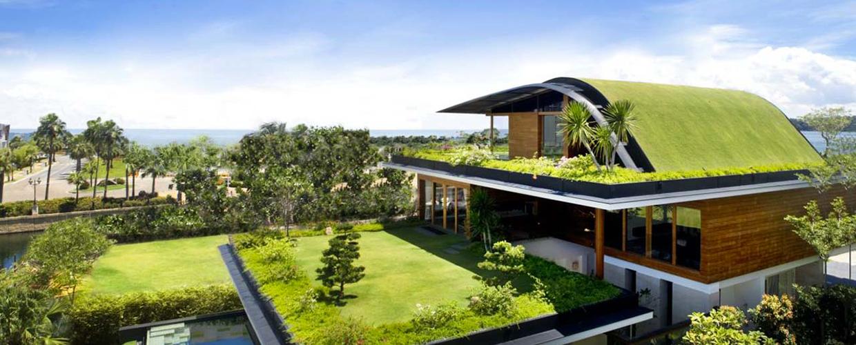 Die besten Pflanzen für Dachgärten