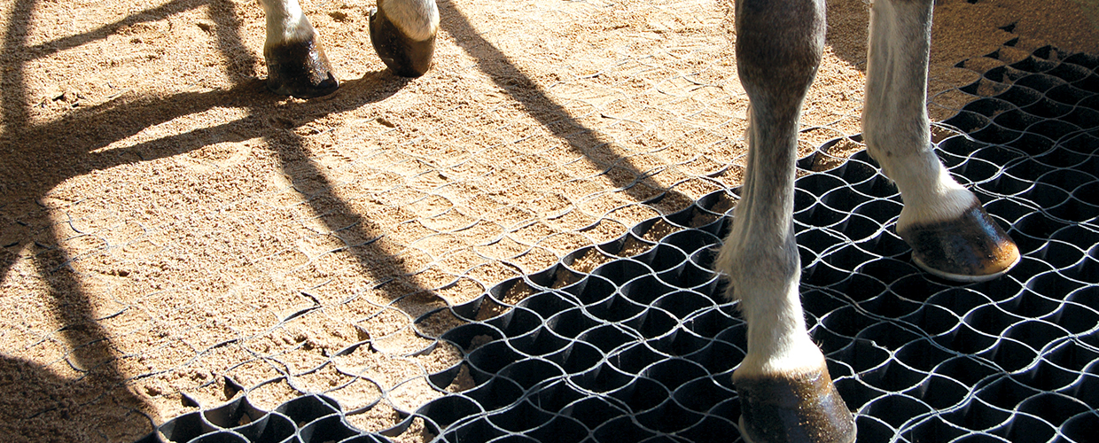 Runfloor Horses improves the stability of training and race