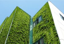 Geoplast green wall
