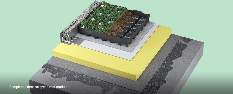 Completa extensive green roof module