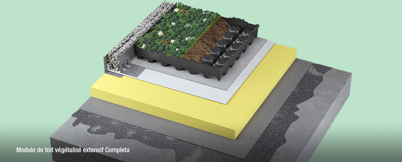 Module de toit végétalisé extensif Completa